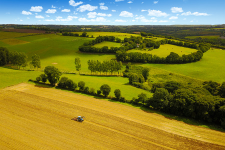 Tractor drives at harvest on cornfield in summer Banque d'images - 121134430