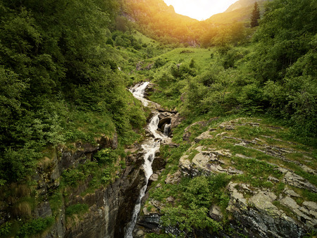 Creek with waterfall in the forest in the mountains of the Pyrenees in summer Banque d'images - 121134436