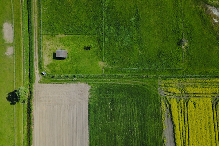 Field and green meadow from above in summer Banque d'images - 121134437