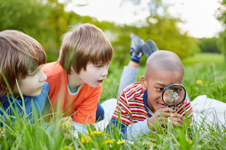 Three children are looking at a flower through a magnifying glass as a researcher and botanist