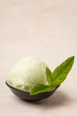 Homemade scoop of peppermint ice cream with fresh Moroccan mint