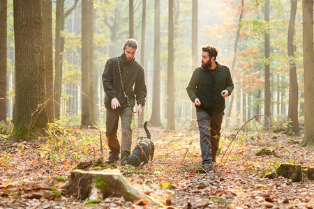 Two hunters or foresters with a hound as a hunting dog on a walk in the forest