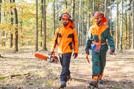 Two forest workers as lumberjacks with chainsaw and protective clothing in the forest 写真素材