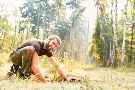 Young forester or forest worker planting seedling for afforestation
