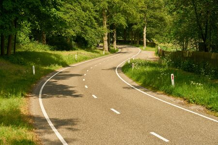 Curvy empty country road in summer by green nature
