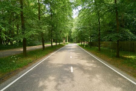 straight two lane empty highway through nature in summer Stockfoto