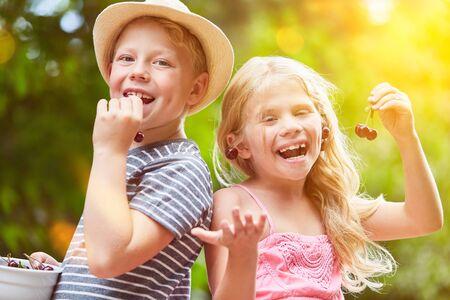 Two laughing siblings eat cherries in the summer garden 版權商用圖片