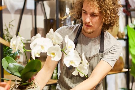 Young florist in training with an orchid in the flower shop
