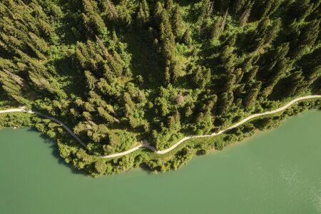 Top view of hiking trail trough forest next to lake shore in summer
