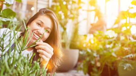 Asian woman works as a florist in flower shop between many green plants Imagens