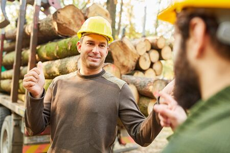 Two forest workers plan transport and loading of the tree trunks together Stock Photo