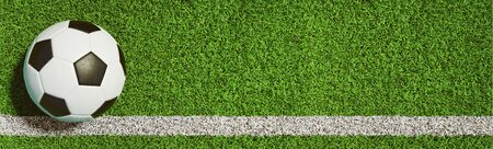 Soccer ball on a green grass as a panorama background (3D Rendering)