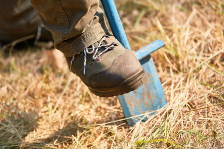Forest worker digs a planting hole with the spade during reforestation in the forest Stock Photo