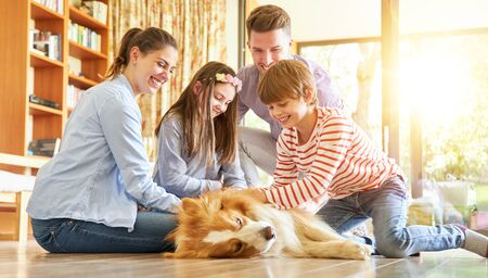 Family with children at the dog caressing in the living room
