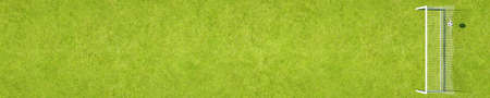 Soccer hits the goal on a playing field from above in panorama view as a background (3D rendering) Фото со стока