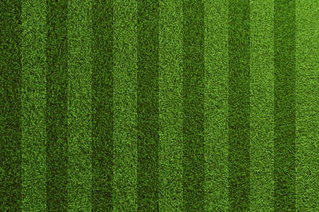 Green soccer lawn texture with stripes, seen from above (3D rendering) Foto de archivo