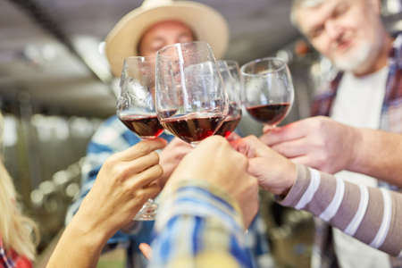 Winegrowers team celebrates or makes a wine tasting while toasting with red wine