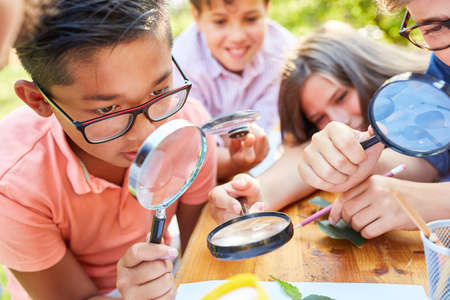 Children in ecological holiday course curiously look at leaf through magnifying glass at summer camp