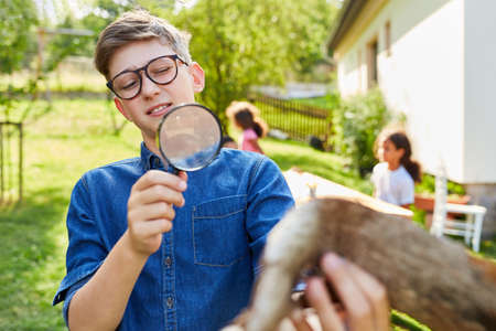 Boy as a curious researcher in the biology holiday course looks at tree bark through magnifying glass