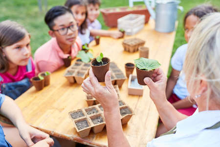 Group of children learn about biology and plants in the ecological holiday camp