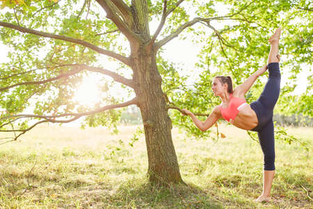 Sporty young woman doing a healthy stretching exercise in nature in summer 免版税图像
