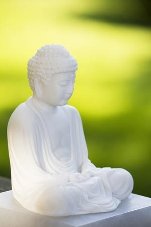 White Buddha on green Stock Photo - 8476209