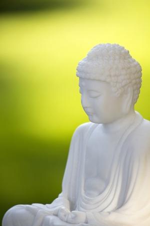 oneness: white buddha and green background