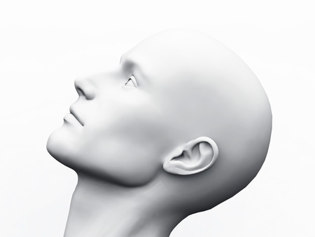 White Male Head photo