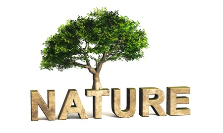 environmental awareness: 3D text with green tree NATURE Stock Photo