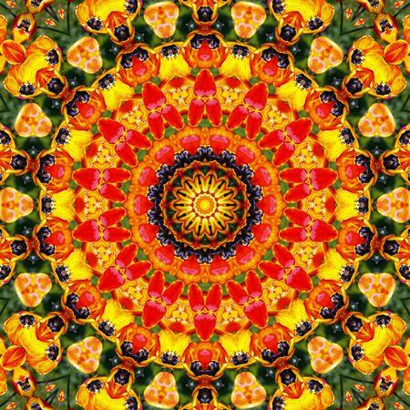 Flower Mandala Stock Photo - 13821032