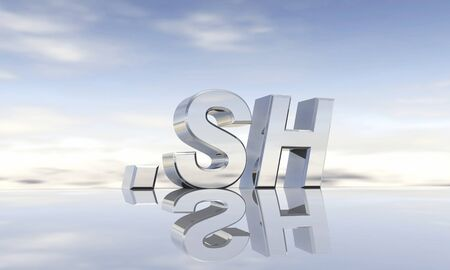 sh: Top-Level-Domain  sh