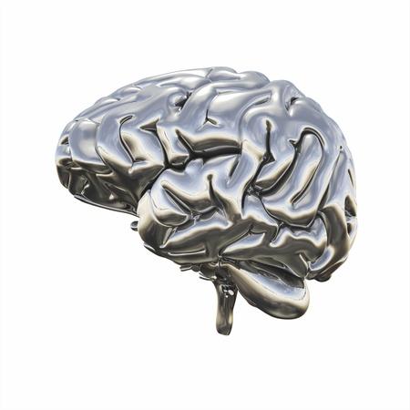 ego: Chrome brain - right view Stock Photo