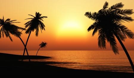 Chill out Ibiza Sunset Beach