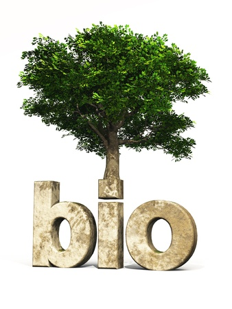 3D text with organic tree for climate protection photo