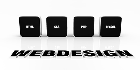 Web design portfolio concept Black Stock Photo - 14452917