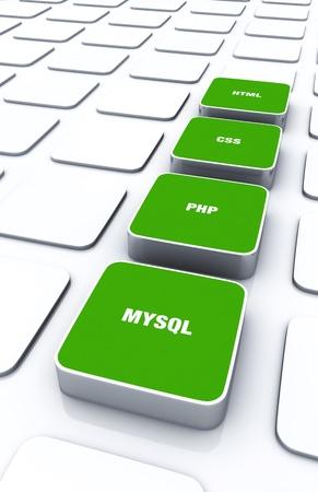 xhtml: 3D Designs Green - HTML CSS PHP MYSQL