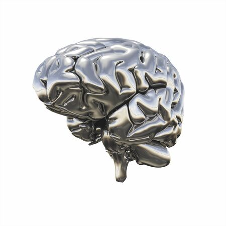 3 d illustrations: Chrome brain - half right view