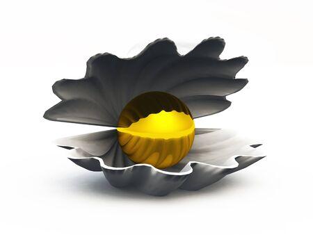 Treasure in the Shell Stock Photo - 14548000