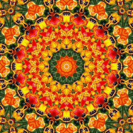 backplate: Flower Mandala  Stock Photo