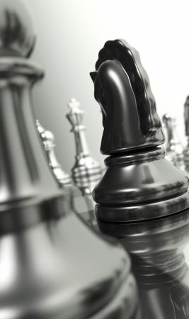 Checkerboard Makro - Der schwarze Ritter 2 Standard-Bild