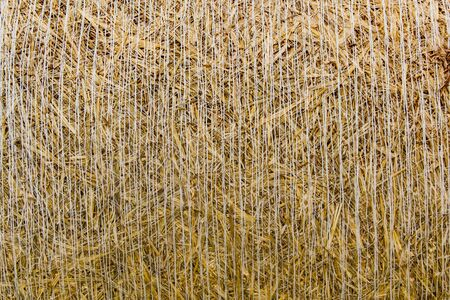 fall about: Straw bales around the background - Frontal