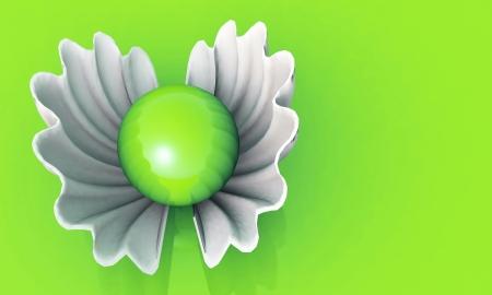 Pearl White - white shell