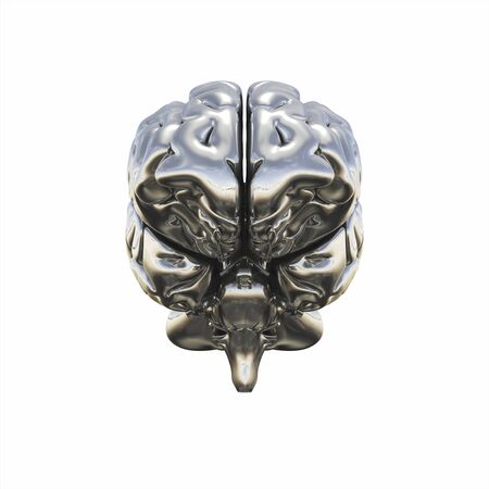 frontal view: Chrome brain - frontal view