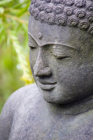 Stone Buddha in the garden photo