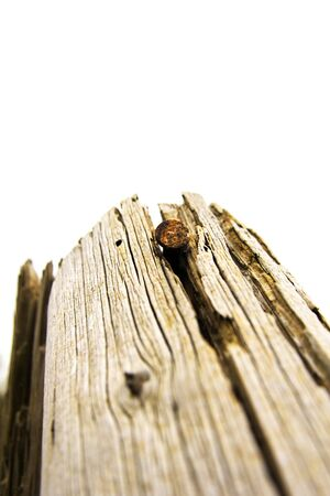 curren: The rusty nail isolated on wooden post