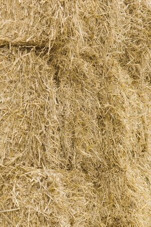 Straw bales background 07 Stock Photo - 16452192