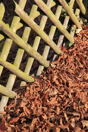demarcation: Picket fence in autumn 2