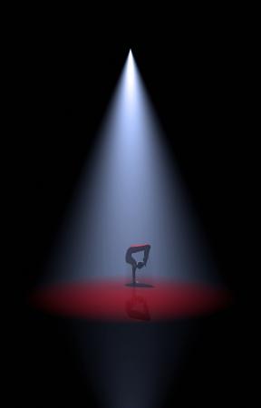 show ring: Artist Spotlight