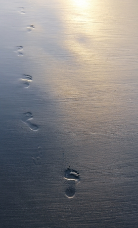 Footprints in wet sand
