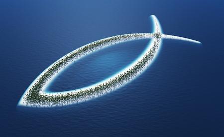 Ichthys fish symbol - island concept Stock Photo - 18732711